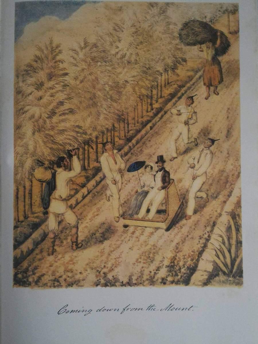 Ilha da Madeira em português cover image