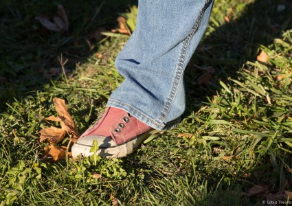Lisa's shoes