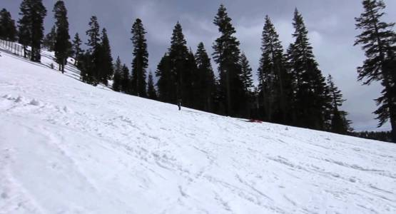 Northstar with the Cassianis