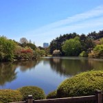 11 distinguishing facts about Japan