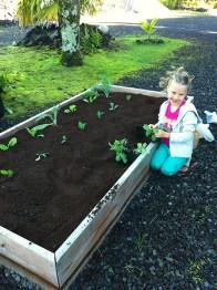 Helping in the garden!
