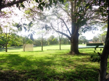 Jardin de Sydney University