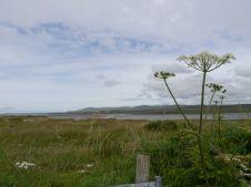 View at Loch Gruinart (Photo by Elina Mäntylä)