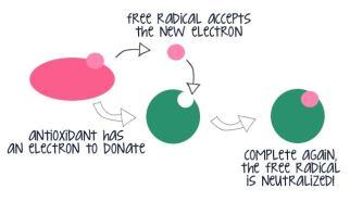 free-radical-neutralized_zps8eb8483f