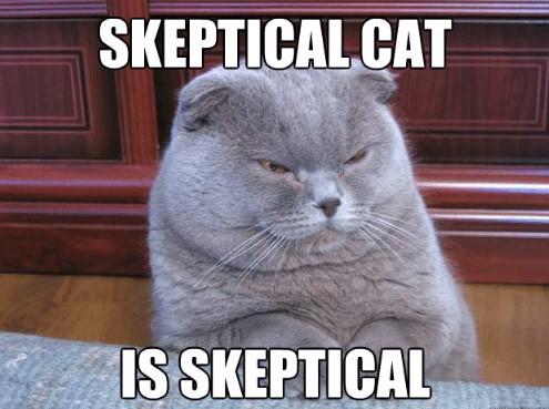 skepticalcat-sskeptical-skeptic-memes-53547500