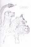 <h5>Cerberus</h5><p>Cerberus drawn by Chris Wright for the animation Orpheus and Eurydice</p>