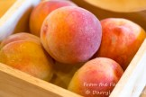 Fresh peaches from the farmers market