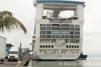 The Star Princess at dockside waiting for a new group of passengers