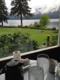 View from the dining room of Lake Quinault Lodge