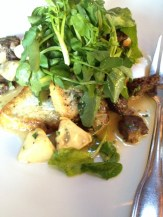 Rhode Island Dory with wild morels