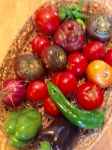 Bounty from Community Farm
