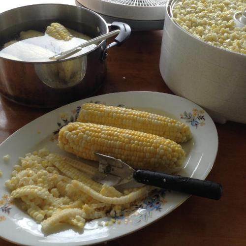 preserving-corn-3