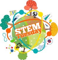 STEM TUESDAY from the mixed up files