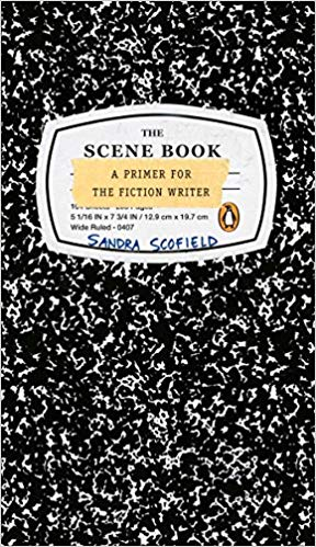 Developing A Scene Within A Chapter