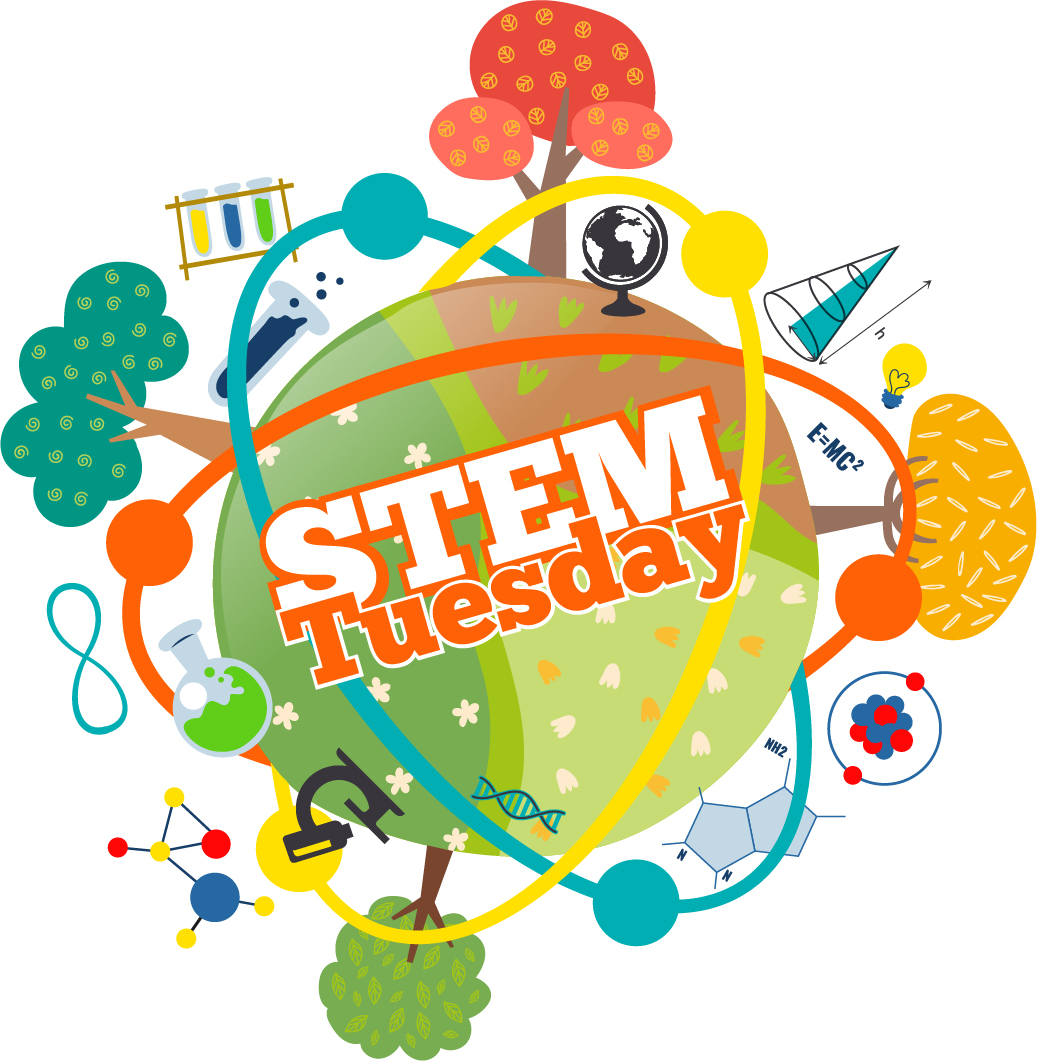 STEM Tuesday-- Special edition-- SEARCH PARTY!