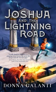 Joshua and the Lightning Road by Donna Galenti