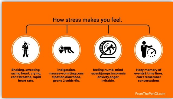 how all stress responses make you feel red flag behaviour change from the pen of