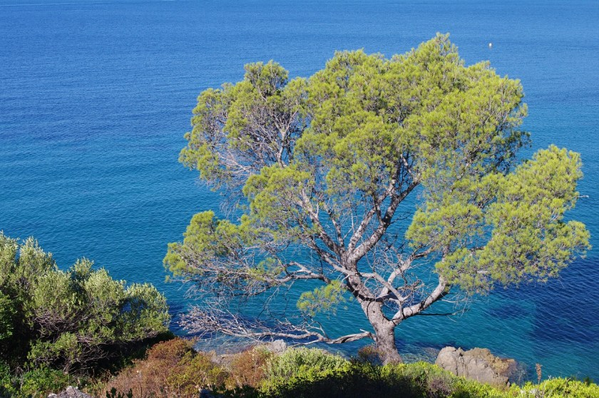 Cote d'Azur, view of the sea, france
