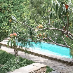 Kitma Lemonies, a very pretty bed and breakfast and rental with pool in Andros, Greece.