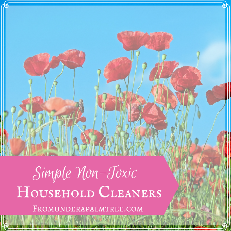 How to make all natural house hold cleaners | how to make simple non-toxic cleaners | Non-toxic cleaners | DIY Cleaning | all-natural cleaners | household cleaners | simple non-toxic cleaners | Sustainable cleaners |