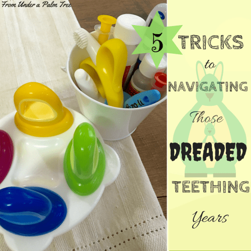 5 Tricks for Navigating Those Dreaded Teething Years by From Under a Palm Tree