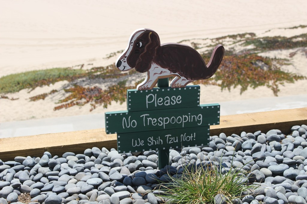 7 Reasons to Scoop the Poop by From Under a Palm Tree