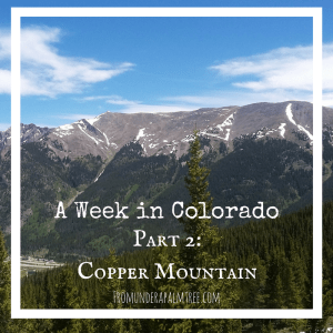 A Week in Colorado – Part 2: Copper Mountain
