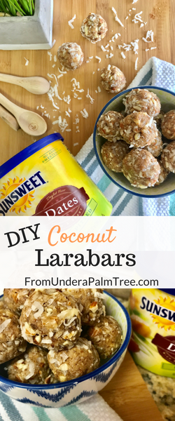 DIY | snacks | snack food | snack bar | easy recipe | easy snack recipe | datebars | snack made with dates | coconut | snacks made with coconut | recipe | snack recipe | quick and easy snacks | sunsweet dates| dried fruit | snacks to make with dried fruit | snacks to make with dried dates | DIY larabars |