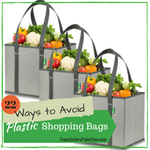 22 Ways to Avoid Plastic Shopping Bags