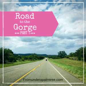 Road to The Gorge – Part 1