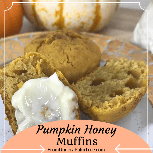 Pumpkin | Pumpkins | Pumpkin recipe | pumpkin recipes | pumpkin honey muffins | pumpkin muffins | pumpkin muffin recipes | muffins | muffin recipe | fall recipes | fall recipe | easy recipe | quick and easy breakfast recipe | on the go foods | on the go recipes | healthy recipes | healthy breakfast foods for kids | healthy breakfast foods | quick baking recipe |