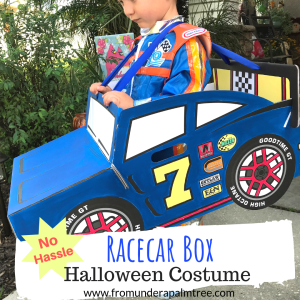 No-Hassle Racecar Box Halloween Costume