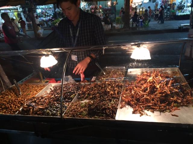 Bangkok insects