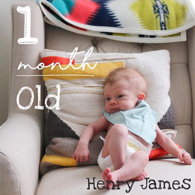 Henry James 1 Month Old
