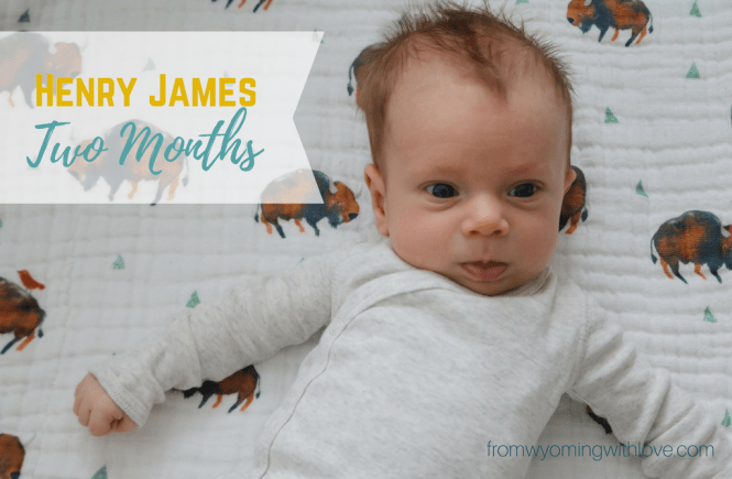 Two months with Henry James
