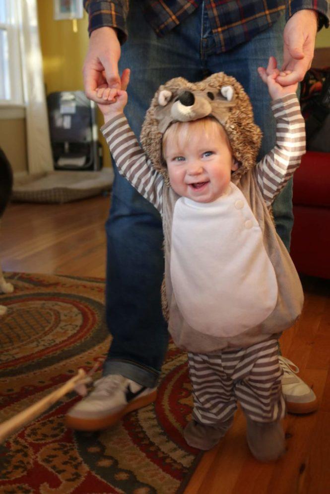 Henry Halloween 2018 Baby Hedgehog Costume