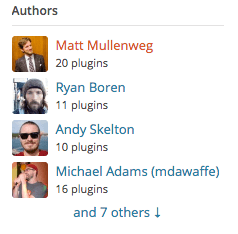 Akismet Plugin Authors