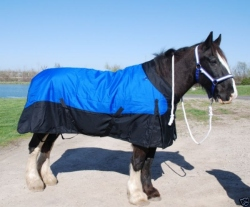 Draft Horse Waterproof 1200 Denier Sheet