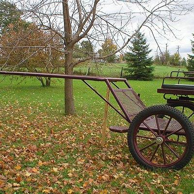 exercisecart