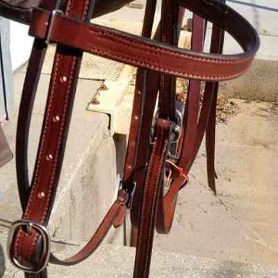 draft plain bridle