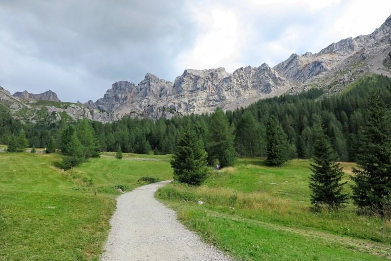 percorso boschi dolomiti