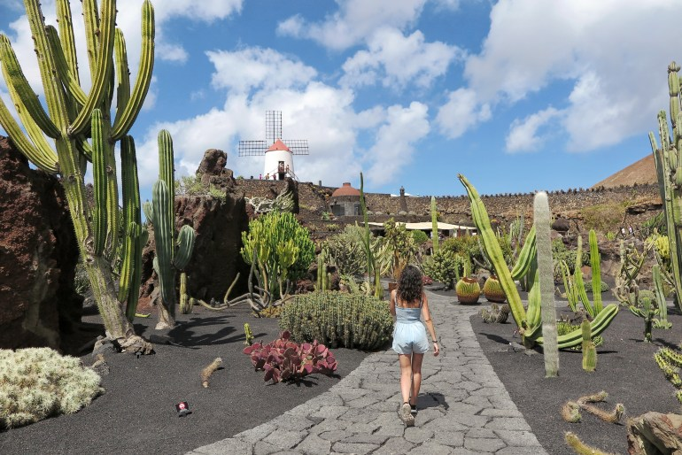 giardini di cactus