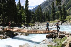 Log bridge crossing on a trek in Kashmir