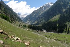 View near Lidderwat while trekking in Kashmir