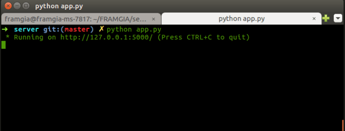 command to run the python server