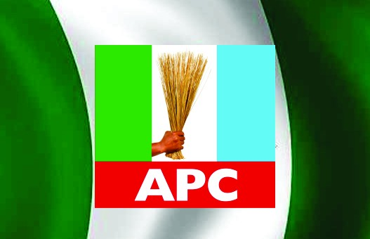 Council elections: Ogun APC releases guidelines