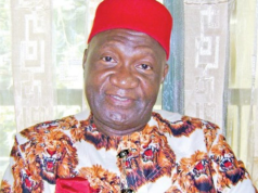 Ohanaeze Ndigbo and the 2109 presidential elections