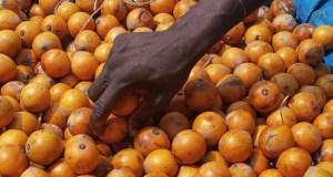 'Agbalumo': Expert explains healing power
