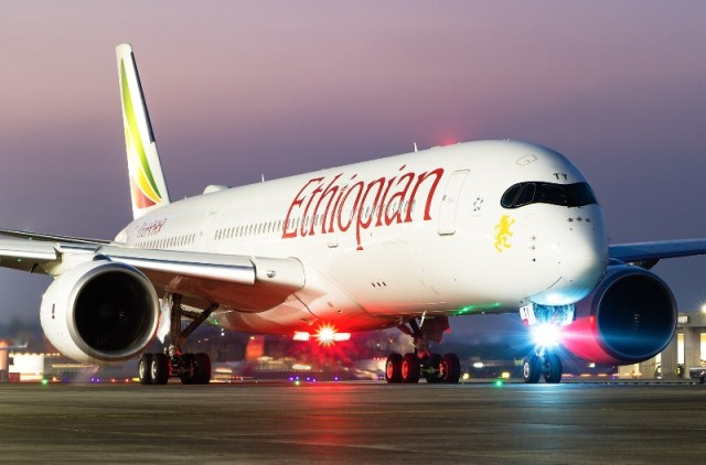 Crashed Ethiopian airline may gulp $60m insurance claims