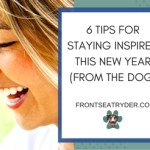 6 Tips for Staying Inspired This New Year (from the Dog)